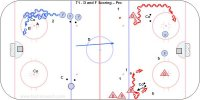 T1 - D and F Scoring – Pro
